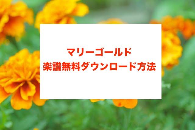 マリーゴールド楽譜の無料ダウンロードに関する参考画像