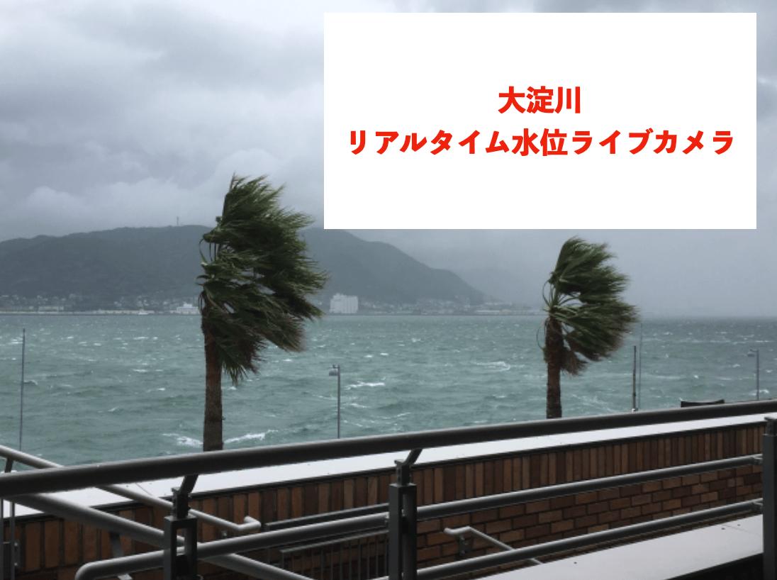 大淀川のリアルタイム水位ライブカメラに関する参考画像