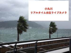 小丸川のリアルタイム水位ライブカメラに関する参考画像
